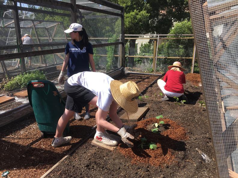 Grow La Victory Garden Classes Fall 2018 School Garden Weekly